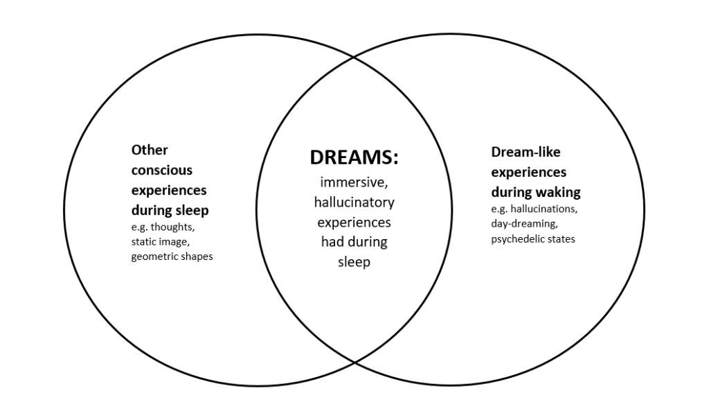 Text Box: Other conscious experiences during sleep (e.g. thoughts, static image, geometric shapes)